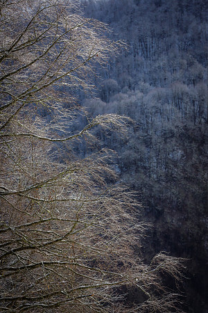 2014 joe kusumoto photography