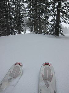 Alta was ski geek's dream: fresh powder as far as the eye could see!