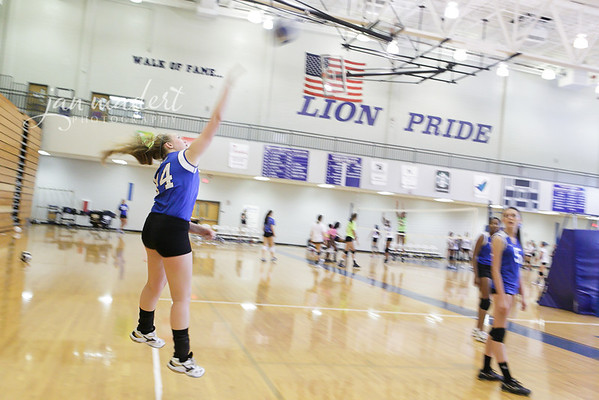 JMadert_PRidgeJV_9_Volleyball_0819_2013_012