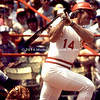 Pete Rose at Bat img102