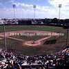 Baseball field in Ruskin Florida img124