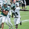 8/2/14-Philadelphia Eagles Training Camp :