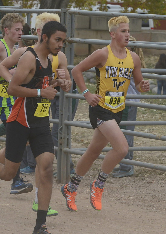 . Thompson Valley\'s Hayden Ell (838) runs in the 4A boys state cross country championship on Saturday in Fort Collins.