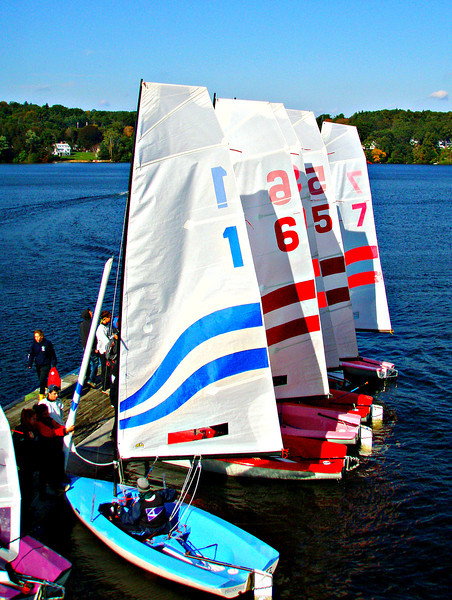 ... and pretty boats all in a row.   Polar Bears in 5.