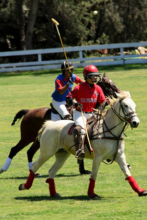 Polo Match at Will Rogers State Park
