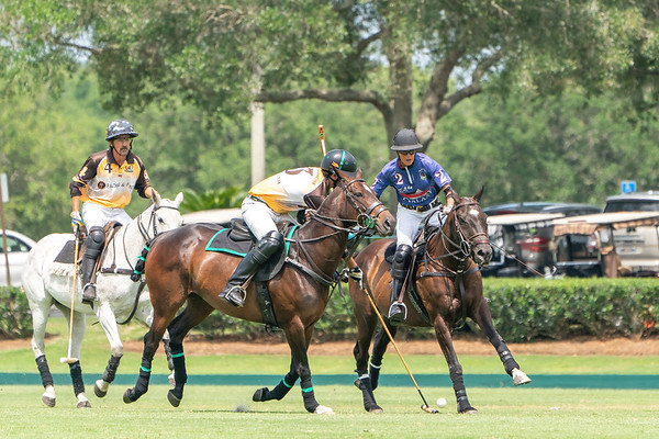 The Villages Polo Club Cup