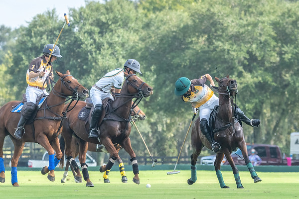 The Villages Polo Club Pro Pool   10-8-2021