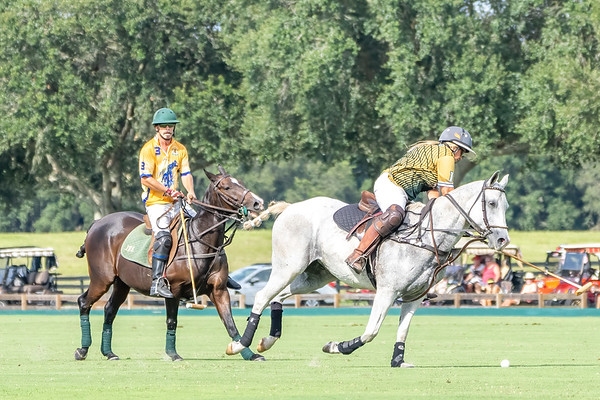 The Villages Polo Club Pro Pool 10-1-2021