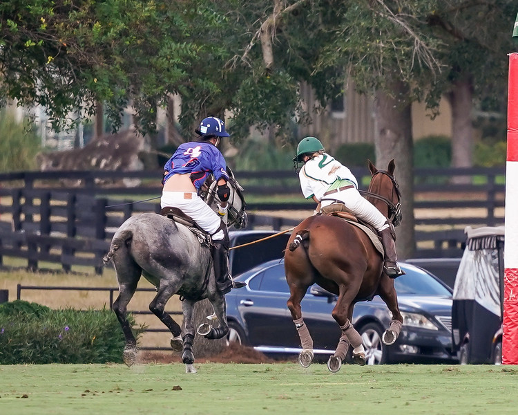 The Villages Polo Players Gallery (6 Goal Tournament-9/27/19-09/29/19)