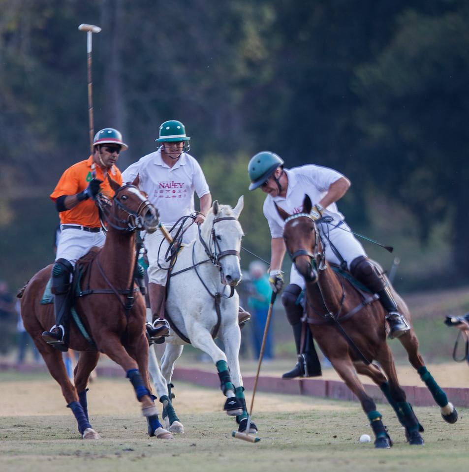 Atlanta Polo Club - October 29, 2013