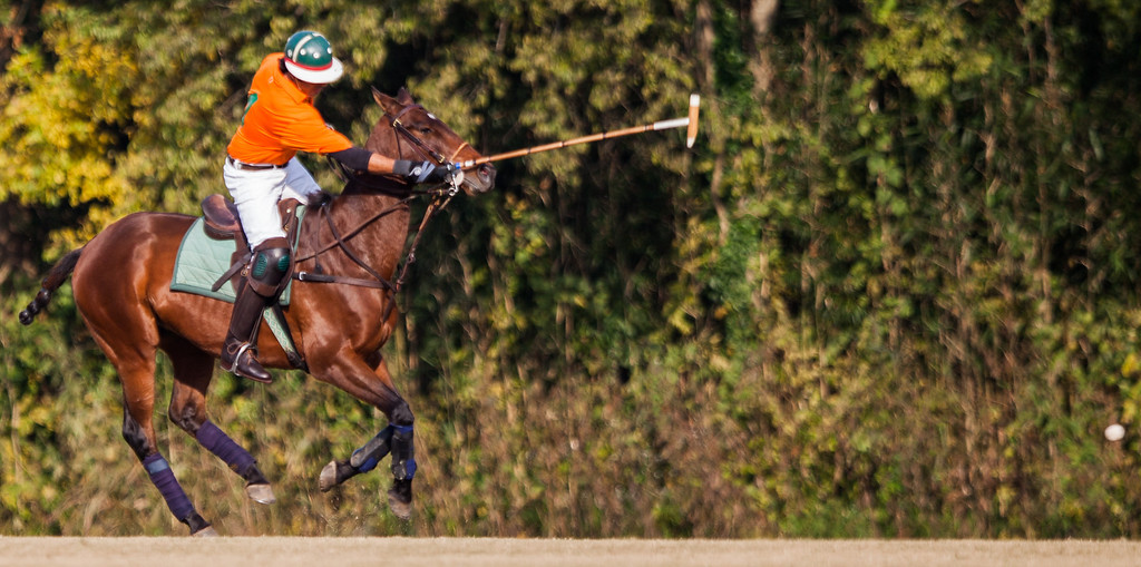 Atlanta Polo Club - October 29, 2013