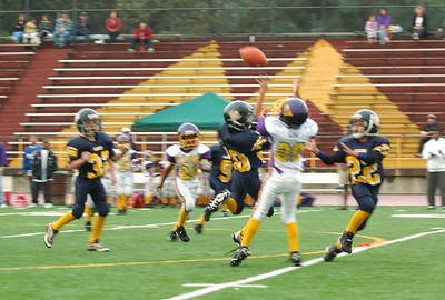 Vikings Gold Vs. Almaden Chargers 10-17-2004