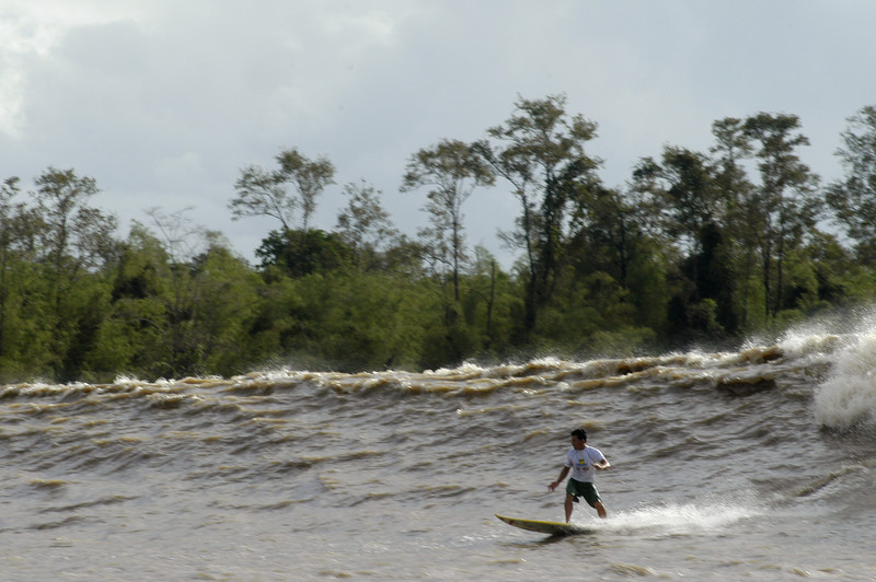 """Brazilian surfer Adilton Mariano surfs on the tidal bore wave, known as pororoca, on the Araguari River, in Brazil's northern state of Amapa. The Araguari pororoca is possibly the most dangerous of all the Amazonian tidal bores, long feared by locals for wreaking havoc on their communities. wave crests at 2 to 3 meters and races at speeds between 30 to 50 kilometers per hour. To catch it, surfers must leap from a motorboat as the wave barrels upriver. Since the wave only occurs twice per day when the incoming ocean tide reverses the river flow for a time, there are not many chances to catch it, The name """"pororoca"""" comes from an Amazonian indigenous dialect meaning """"destroyer"""" or """"great blast."""" Since time immemorial, people have feared the roar which precedes the wall of water that capsizes boats and washes away anything in its path. Now, however, the people are less fearful and have begun to see the wave as a potential tourist attraction that could generate money in of one of the poorest states of Brazil. (Douglas Engle/Australfoto)"""