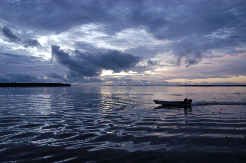"""A speedboat arrives at dawn to carry Brazilian surfers to the approaching tidal bore wave, known as pororoca, on the Araguari River, in Brazil's northern state of Amapa. The Araguari pororoca is possibly the most dangerous of all the Amazonian tidal bores, long feared by locals for wreaking havoc on their communities. wave crests at 2 to 3 meters and races at speeds between 30 to 50 kilometers per hour. To catch it, surfers must leap from a motorboat as the wave barrels upriver. Since the wave only occurs twice per day when the incoming ocean tide reverses the river flow for a time, there are not many chances to catch it, The name """"pororoca"""" comes from an Amazonian indigenous dialect meaning """"destroyer"""" or """"great blast."""" Since time immemorial, people have feared the roar which precedes the wall of water that capsizes boats and washes away anything in its path."""