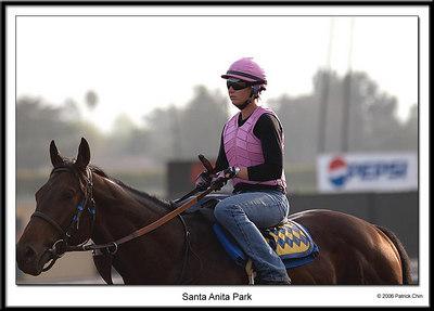 Practice run at Santa Anita race track
