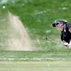 5A Regional Golf021