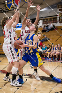 gBB-JV CMH v Waukesha South_20140205-45