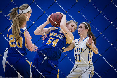gBB_CMH v New Berlin West_20150224-89
