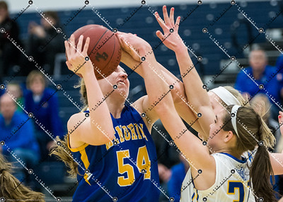 gBB_CMH v New Berlin West_20150224-118