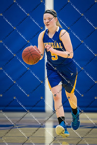 gBB_CMH v New Berlin West_20150224-23