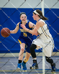 gBB_CMH v New Berlin West_20150224-122