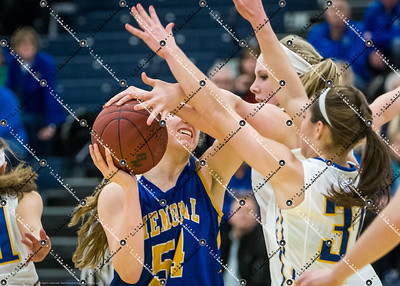 gBB_CMH v New Berlin West_20150224-116
