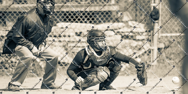 softball CMH v DSHA_20130511-137