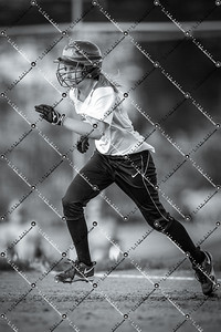 softball CMH v New Berlin Eisenhower_20130521-154