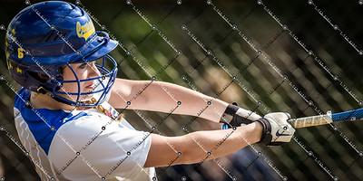 softball CMH v New Berlin Eisenhower_20130521-39