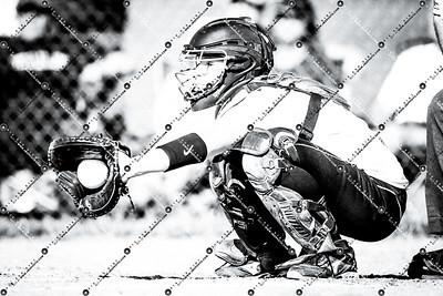 softball CMH v New Berlin Eisenhower_20130521-140