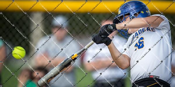 softball CMH v New Berlin Eisenhower_20130521-147