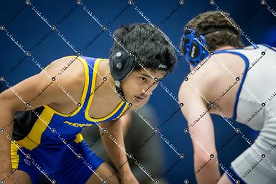 wrestling CMH v Waukesha West_20140130-146