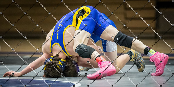 wrestling CMH v Waukesha West_20140130-226
