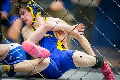 wrestling CMH v Waukesha West_20140130-242
