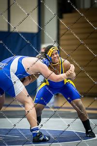 wrestling CMH v Waukesha West_20140130-46