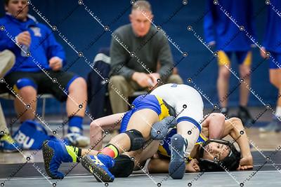 wrestling CMH v Waukesha West_20140130-133