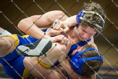 wrestling CMH v Waukesha West_20140130-199