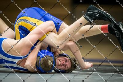 wrestling CMH v Waukesha West_20140130-201