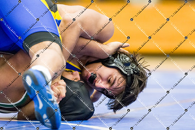 Wrestling_CMH v Greenfield_20150115-47