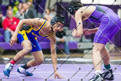 Wrestling_CMH v Waukesha North_20141204-36