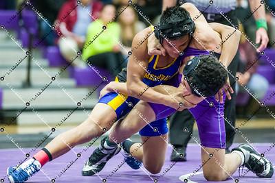 Wrestling_CMH v Waukesha North_20141204-32