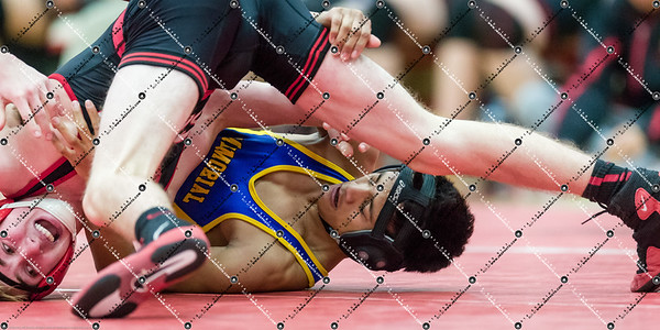 Wrestling_CMH v Waukesha South_20141218-201