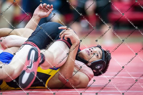 Wrestling_CMH v Waukesha South_20141218-210