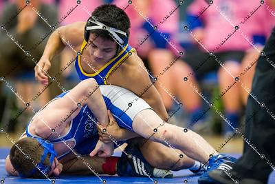 Wrestling_CMH v Waukesha West_20150129-207