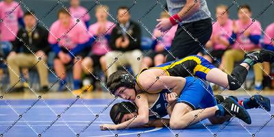 Wrestling_CMH v Waukesha West_20150129-138