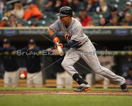 Detroit Tigers outfielder Quintin Berry (52) putting down a bunt on May 26, 2012:  during the Minnesota Twins game versus the Detroit Tigers at Target Field in Minneapolis, MN.   Detroit 6 and Minnesota 3.