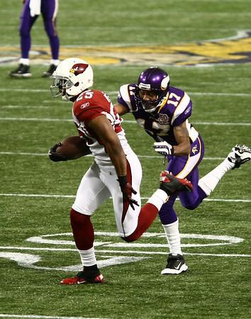 MN Vikings vs Arizona Cardinals (Nov 7, 2010)