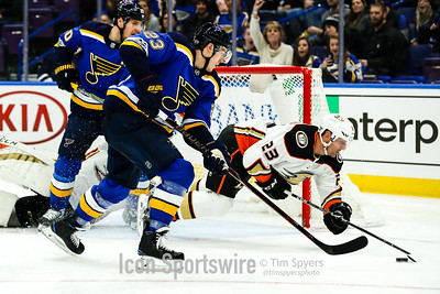 NHL: DEC 14 Ducks at Blues