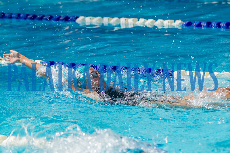 Lily Tallerico in the 50 Yard Backstroke