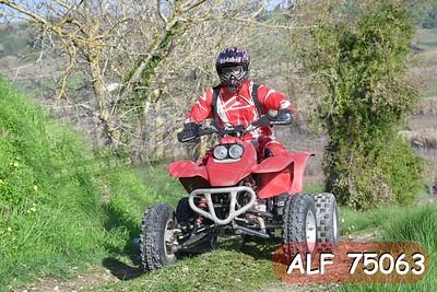ALF 75063